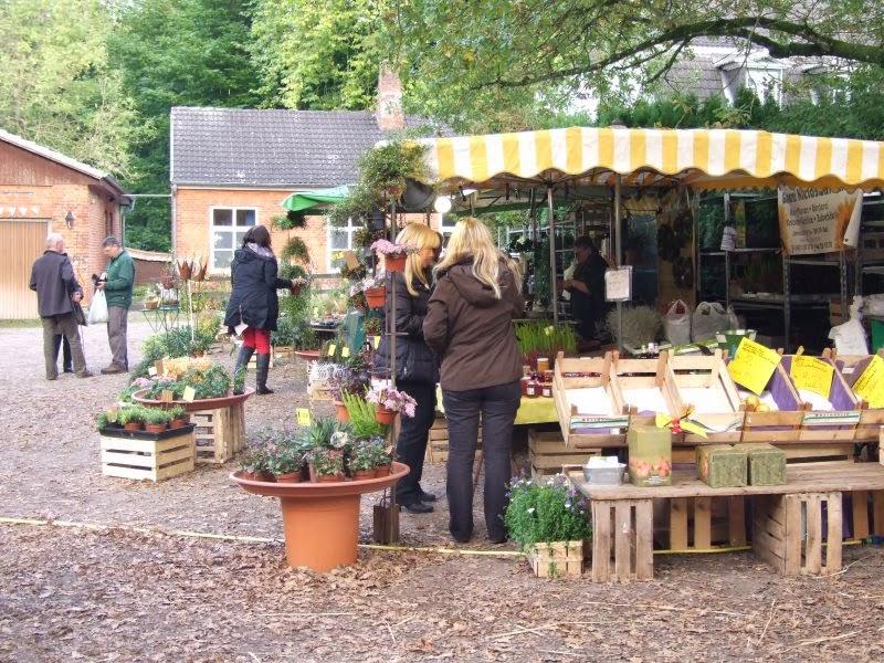 Gut Hohenhain Herbstmarkt
