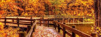 Belle couverture facebook automne 2