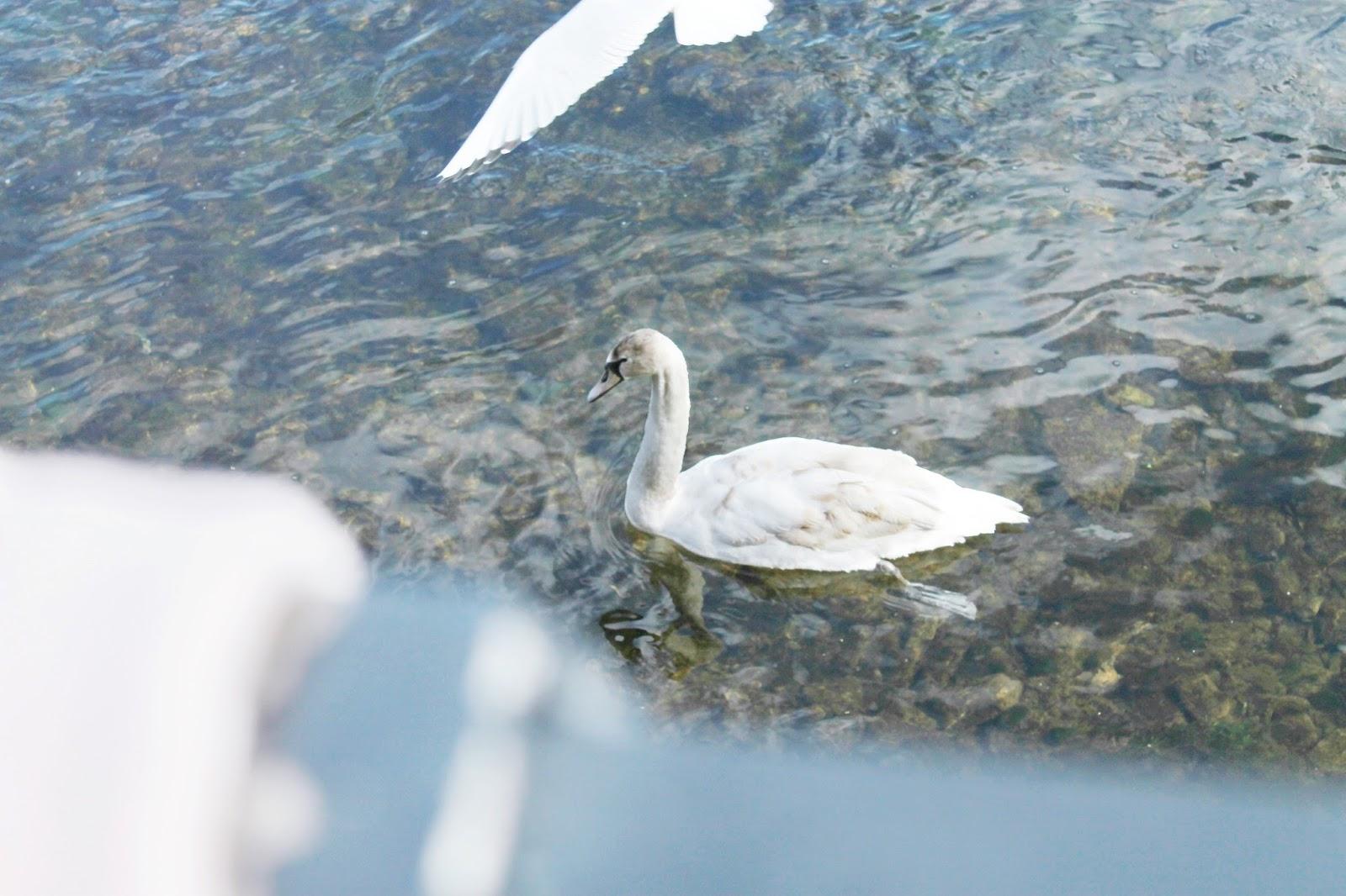 Lake District Kendal Cumbria