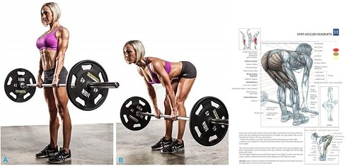 The Best Benefits of Deadlifting for Women