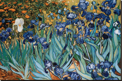 Pinturas de Van Gogh - (Pos-Impressionismo) Pintor Holandês