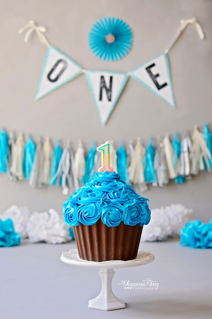 Phanessa S Crafts Diy Giant Cupcake Smash Cake