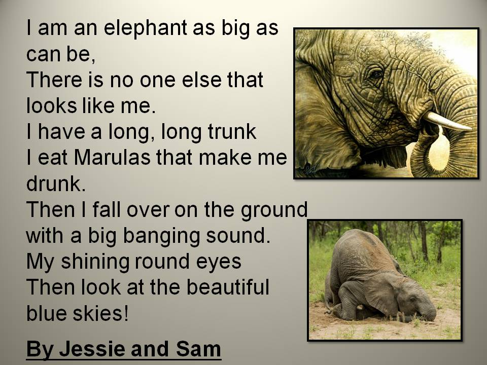 essay on elephants for kids