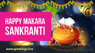 Happy  Makara Sankranti wishes In English Language