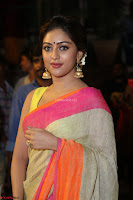 Anu Emanuel Looks Super Cute in Saree ~  Exclusive Pics 059.JPG