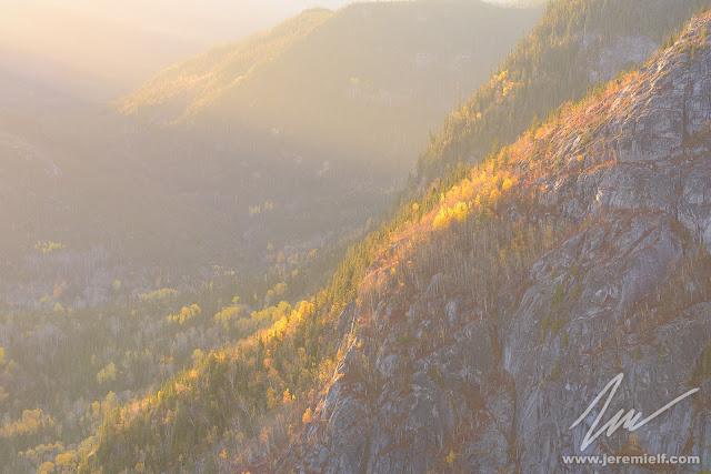 automne, photographie, quebec, canada, jérémie leblond-fontaine, couleurs, orange, canards branchus, paysages d'automne, oiseaux, animaux