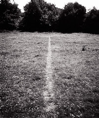 Richard Long, A Line Made by Walking 1967
