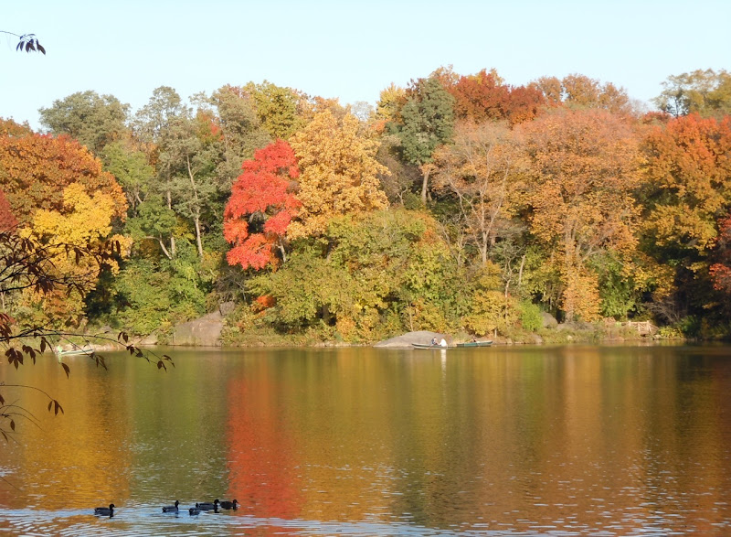 Autumnal Central Park lake