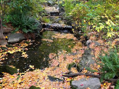 Fall Autumn colors clip art
