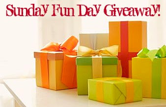Ultimate Sunday Fun Day Holiday Giveaway Winner!