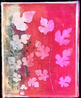 Solarfast prints_Sue Reno_ Image 24