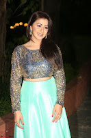 Nikki Galrani in Green Skirt  Top at Marakathamani music launch ~  Exclusive (105).JPG