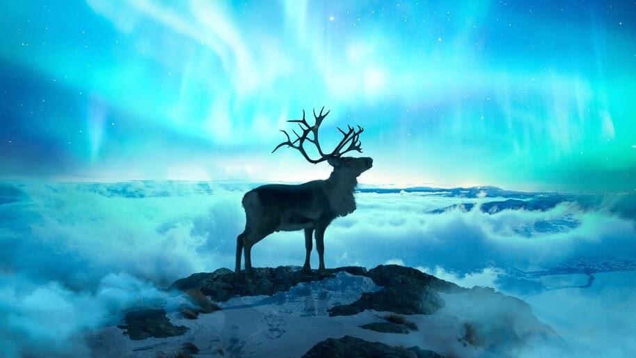 Raindeer Clouds Sky Aurora Borealis 4k Wallpaper 4554
