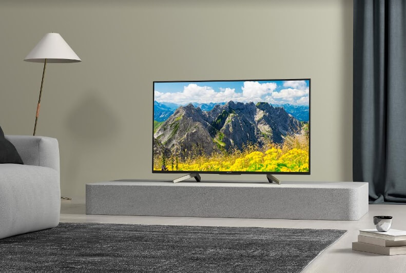 Are You Team LED or OLED TV?