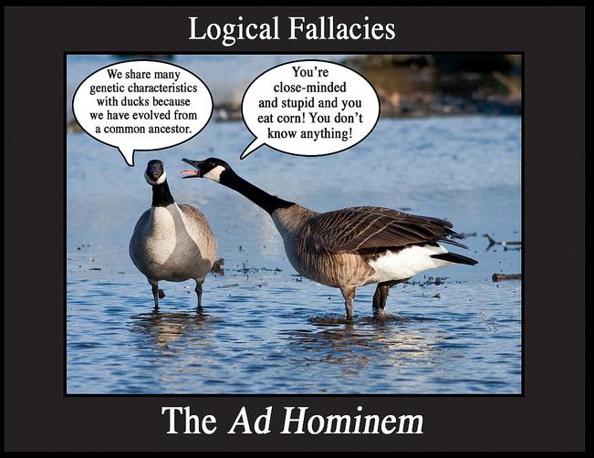 The Way It's Said: Fallacies
