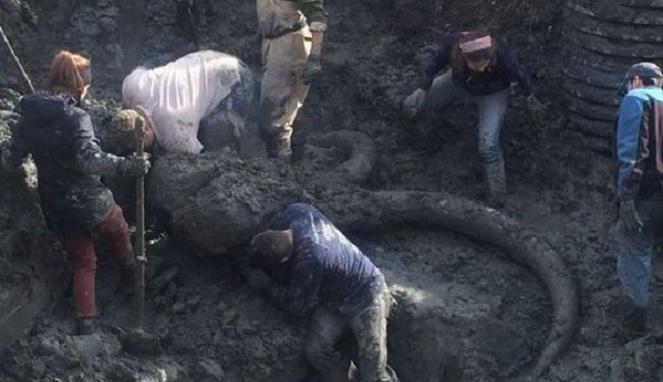 Seorang Petani Temukan Sosok Monster Purba Saat Menggali Di Ladang