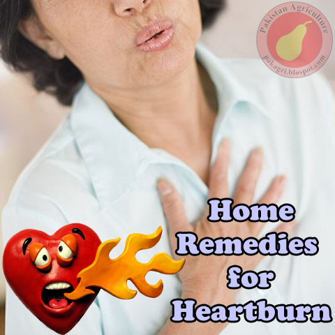 Natural Remedies For Heartburn Due To Pregnancy