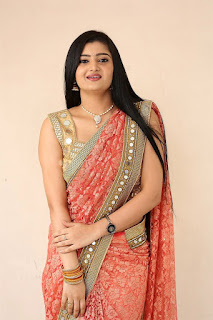 Akshitha Saree Pics at Prasnistha Movie First Look Launch Press Meet