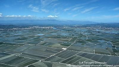 ESPANHA - Deltebre (Delta do Ebro)