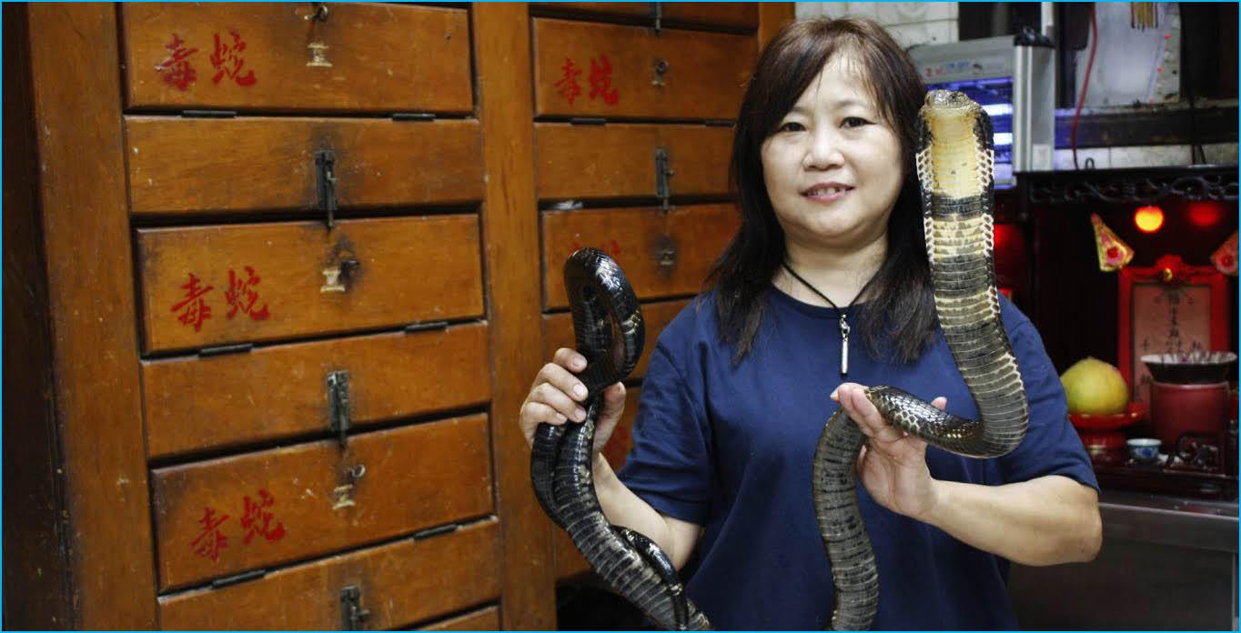 sopa de serpiente china