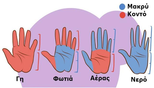 Το σχήμα και το μήκος των Χεριών μας