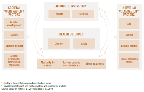 Conceptual causal model of alcohol consumption and health outcomes