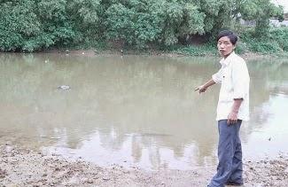 Lạ kỳ khúc gỗ 'bơi' ngược dòng sông Tích suốt 550 năm