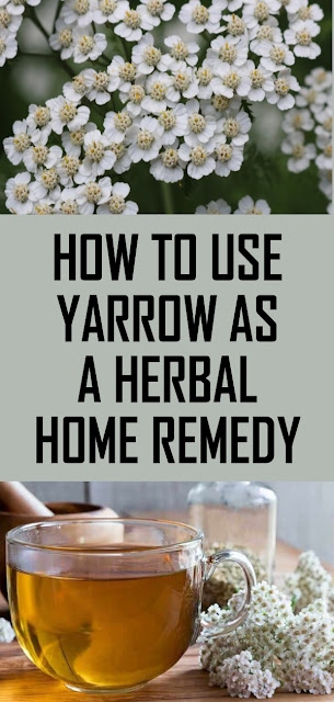 How to Use Yarrow as a Herbal Home Remedy