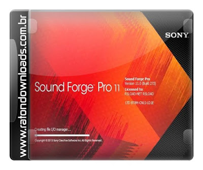 sound forge pro 11 crack e serial torrent sound forge pro 11 0 build 338 sou. Black Bedroom Furniture Sets. Home Design Ideas
