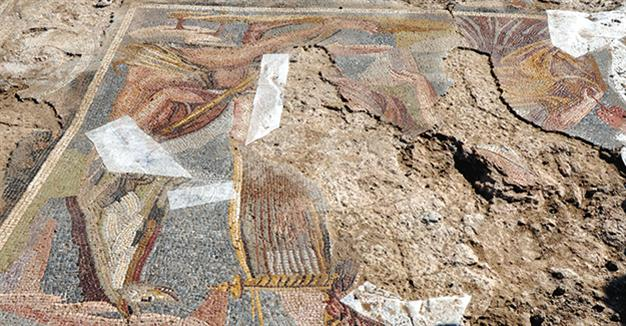 Roman mosaic unearthed in wheat field in Central Turkey