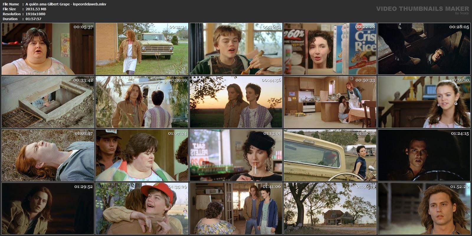 ¿A quién ama Gilbert Grape?   1993   Latino   1080p