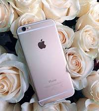 iphone-roses-pink-apps-tips-advice-lifestyle