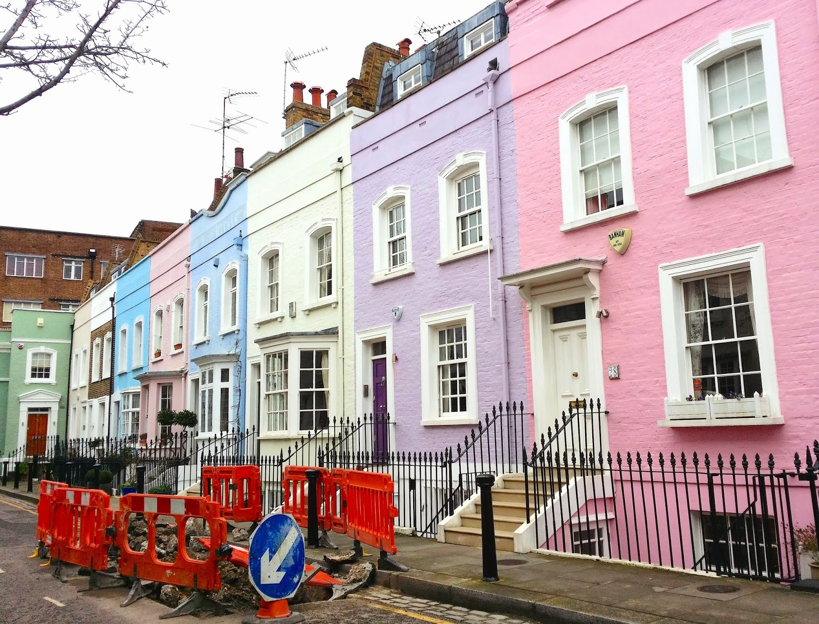 Violet and pink houses