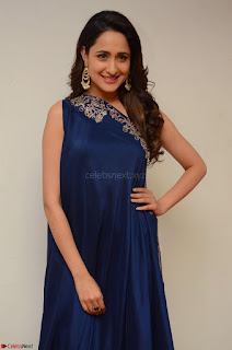 Pragya Jaiswal in beautiful Blue Gown Spicy Latest Pics February 2017 061.JPG