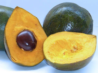 Lucuma Fruit pictures