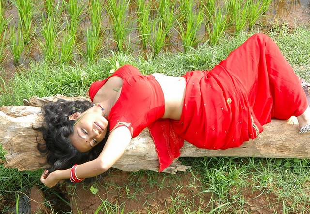 South Actress Teertha lying in Red Saree Hot Top View