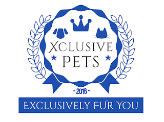 best online pet shop singapore
