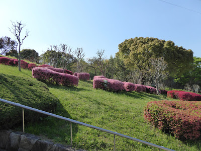 山田池公園 ツツジの丘(花木園)