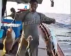 Mancing Seru Pake HandLine Langsung Dapat 4 Ekor Ikan