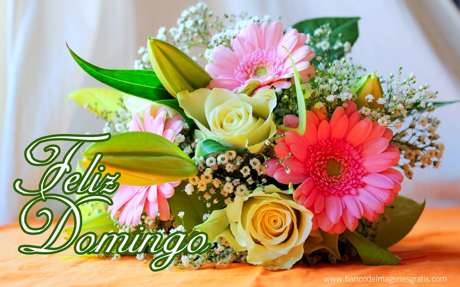 FELIZ DOMINGO/HAPPY SUNDAY On Pinterest