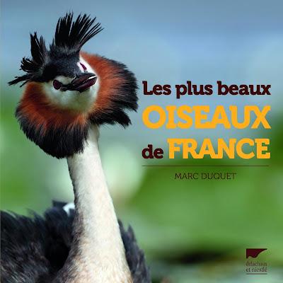 http://www.delachauxetniestle.com/ouvrage/les-plus-beaux-oiseaux-de-france/9782603021392