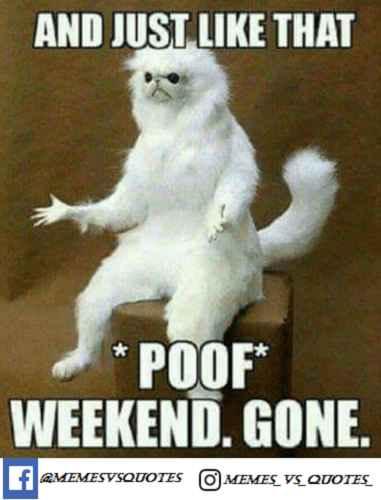 monday weekend memes gone happy poof meme funny whyyyy mondays jussayin start memesvsquotes hey