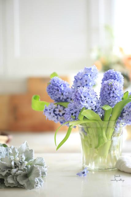 blue spring flowers close up