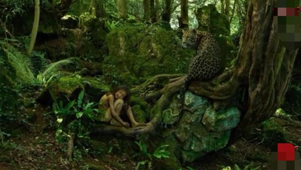 Wild Animals Fed