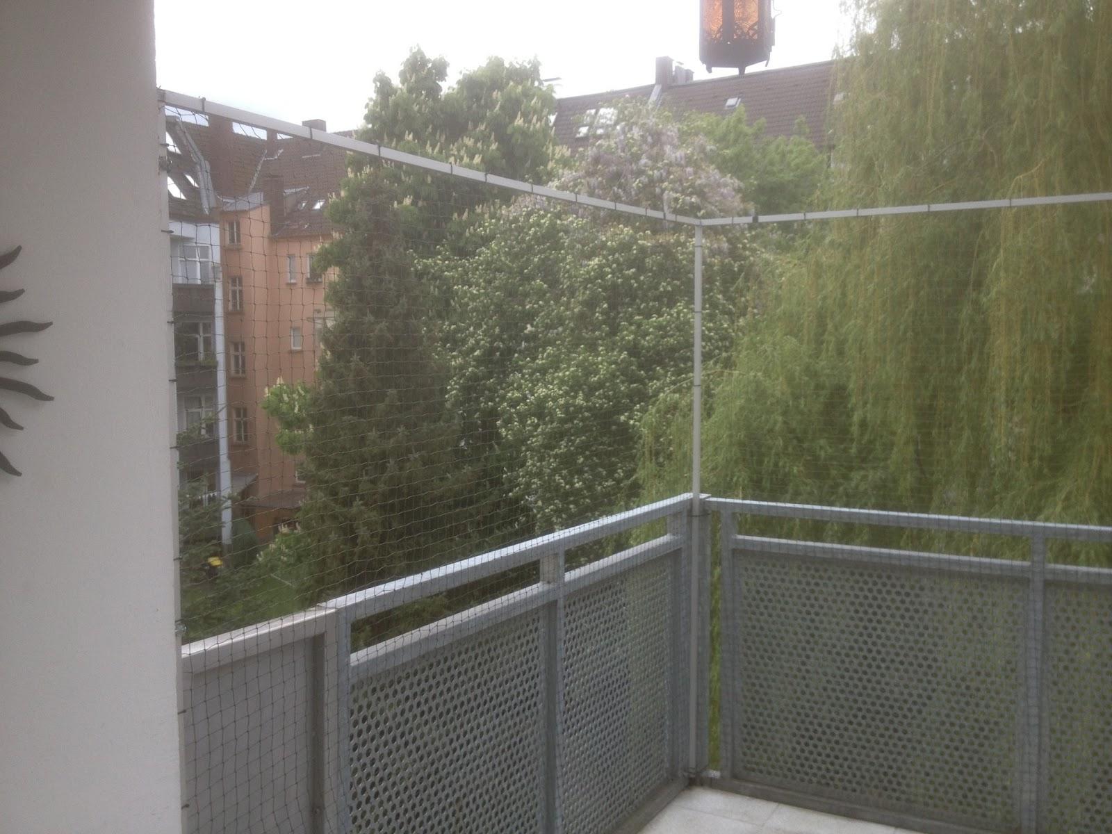 Katzennetz Nrw Die Adresse Fur Ein Katzennetz Katzennetz Fur Balkon