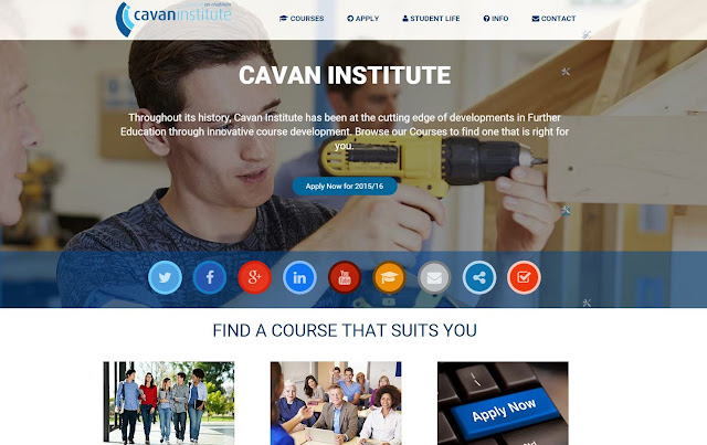 Cavan Institute Website