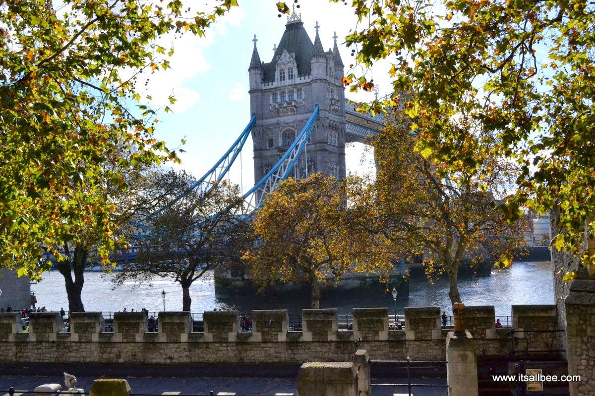 Tower Bridge London - Poppies