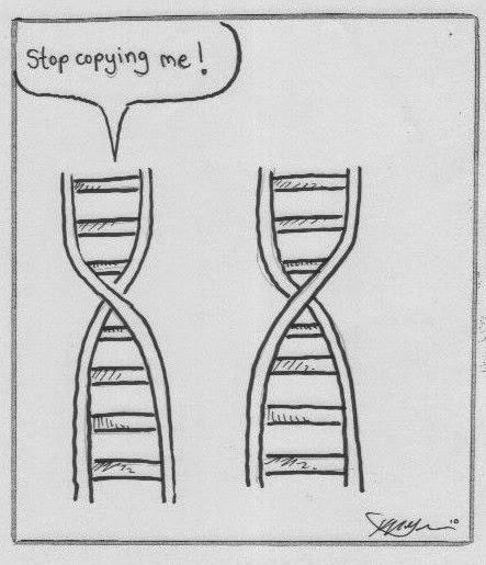 DNA Barcoding: Friday fun