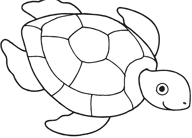 Want To Go Sea Turtle Coloring Page