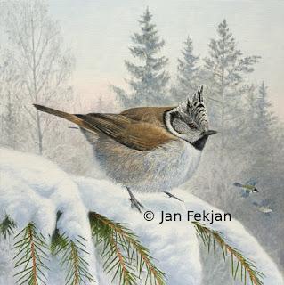 Bilde av digigrafiet 'Toppmeisen, ein optimist'. Dette er et vintermotiv av småfugl. Hovedmotivet er en toppmeis (Lophophanes cristatus tidl. Parus cristatus), en liten fugl som siter i en snøkledt gran. I bakgrunnen er det blandingsskog med bjørk, gran og furu. Man skimter også to kjøttmeis som flyr. Bildet er kvadratisk.